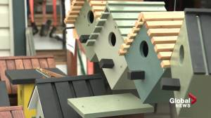 Birdhouse sales to support the Stollery Children's Hospital (01:40)