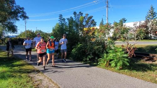 Province-wide relay run for monarch butterflies kicks off in Peterborough | Watch News Videos Online