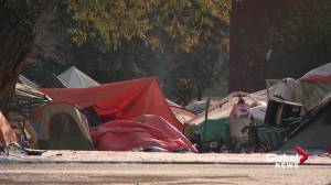 Edmonton encampment asks city for heated trailers as drug overdose reversal medication freezes (01:51)