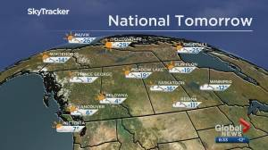 Edmonton weather forecast: Sunday, Feb. 16