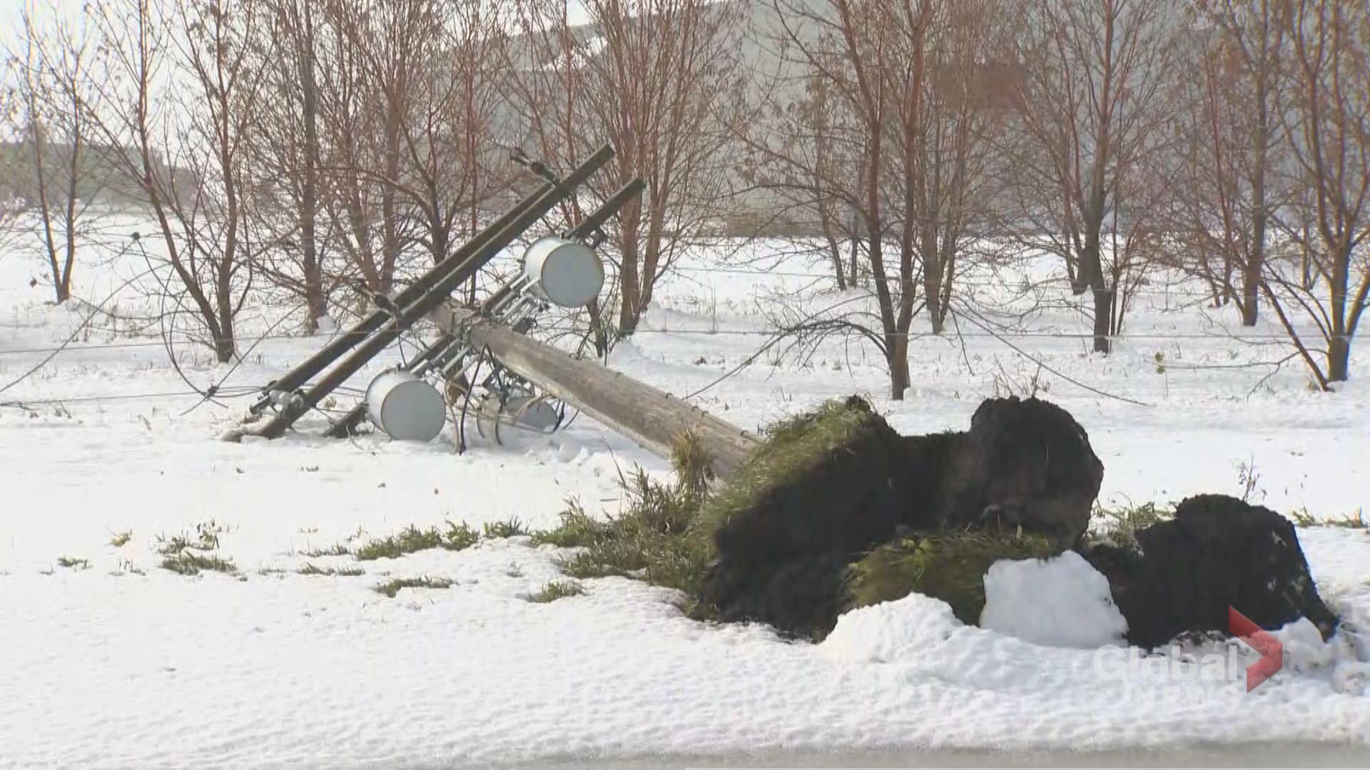 Snow storm downs wreaks havoc in Portage la Prairie, Man.