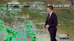Edmonton weather forecast: Thursday, June 4, 2020