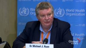 Coronavirus outbreak: WHO official slams misinformation as 'committed act'