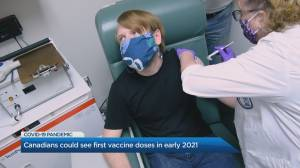 Canadians could get first COVID-19 vaccine in early 2021 (04:18)