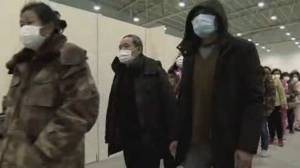 COVID-19 outbreak: WHO says China's lockdown is slowing virus spread