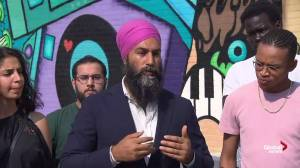 Federal Election 2019: Singh talks about how he would tackle systemic racism