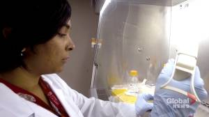 University of Calgary researchers hope to work on Covid-19 in refurbished biolab (03:10)