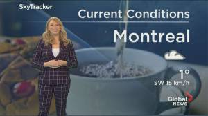 Global News Morning weather forecast: March 3, 2020