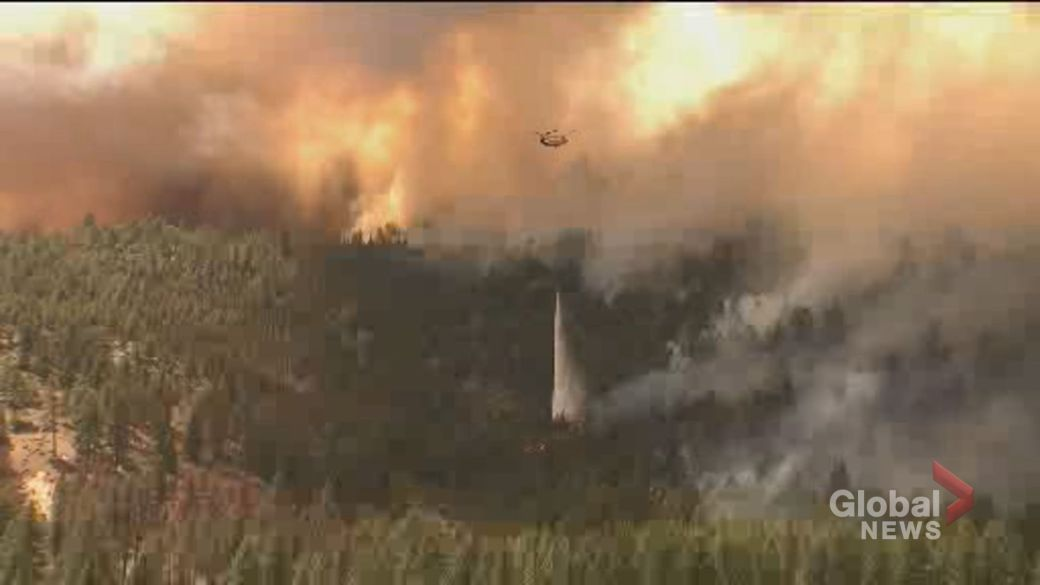 Click to play video: 'Wildfires tear through US west coast amid extreme heat wave'