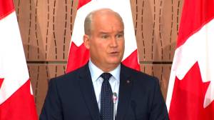 Canada has 'to take stronger, more principled approach' to China, O'Toole says (01:00)