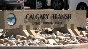 Rapid testing underway for staff at Calgary Transit bus barn following COVID-19 variant case (01:35)