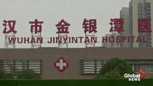Coronavirus: WHO team in Wuhan head for hospital (01:25)