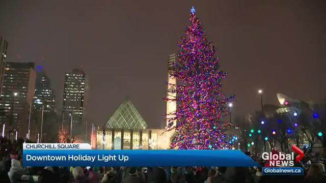 Massive White Spruce Tree Lit Up In Churchill Square Edmonton Globalnews Ca