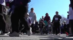 Peterborough Butterfly Run kicks off in virtual fashion in 2021 (02:14)