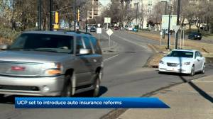 UCP set to unveil plan to make auto insurance more affordable (01:29)