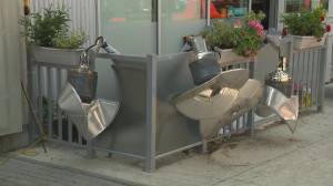 B.C. restaurant hit with vandalism after repeat plant thefts (01:59)