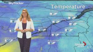 Global News Morning weather forecast: June 2, 2020