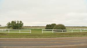 Regina Indian Industrial School considers expanding search for unmarked graves (02:00)