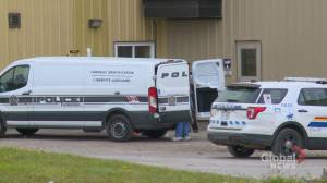 Police investigating following discovery of human remains at Fredericton's landfill