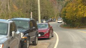 Town overrun by tourists from Toronto seeking fall colours