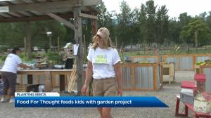 Food For Thought shows off garden project with fundraiser (01:48)