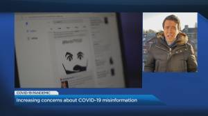 Increasing concerns about COVID-19 misinformation (05:04)