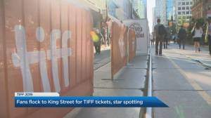 Toronto is buzzing with excitement as TIFF red carpet rolls out
