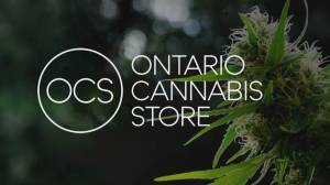 Ontario Cannabis Store sells data about consumer purchases