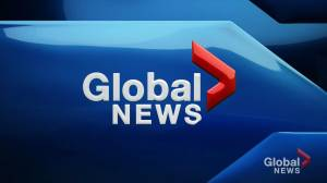 Global News at 5: September 19 Top Stories