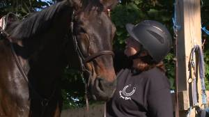 Whitby woman shares love of horses through fundraiser (01:47)