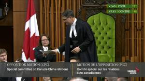 House votes in favour of special committee on Canada-China relations (11:12)