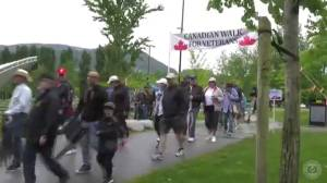 A preview of the Second Annual Canadian Walk for Veterans