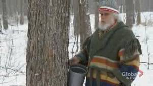 Maple syrup industry sounds alarm over new Quebec lumber policy (02:11)