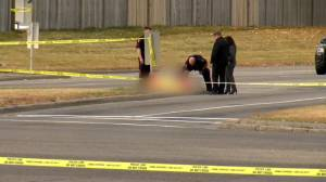 Woman charged in Memorial Drive homicide: Calgary police (01:19)