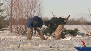 Transport Canada investigates fatal plane crash