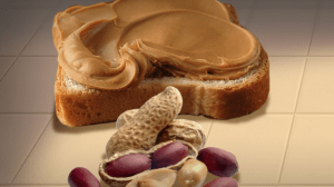 Researchers work on peanut allergy therapy