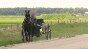 Mennonite families get their children back
