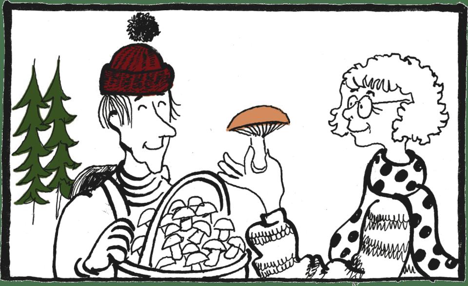 Man får plocka svamp och bär. Teckning: Per Silfverhjelm (ur Goda grunder – vardagssvenska för nyanlända).