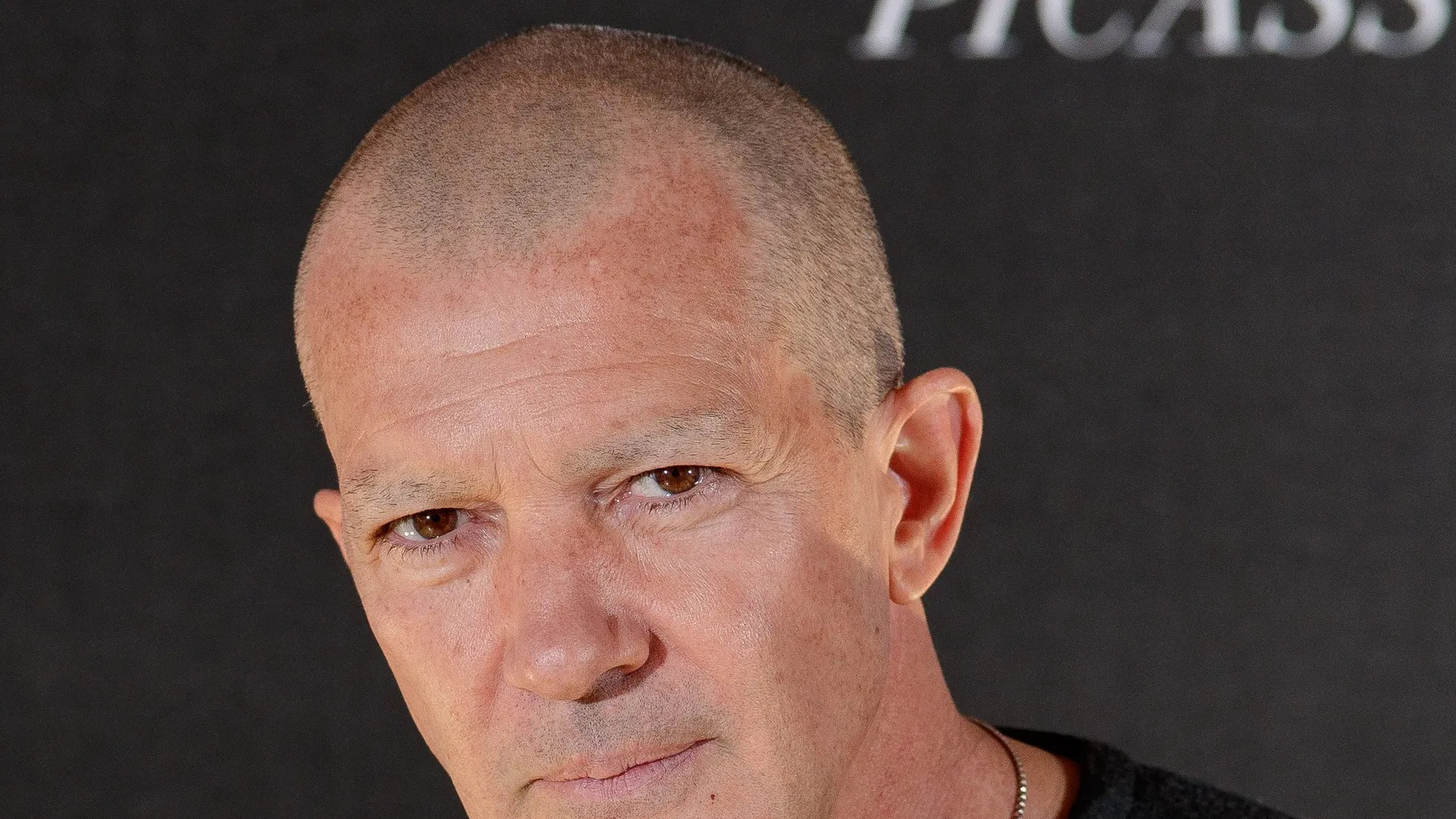 Antonio Banderas Shaved Off His Eyebrowsand Other