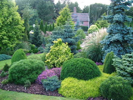 foxhollow garden - and colourful
