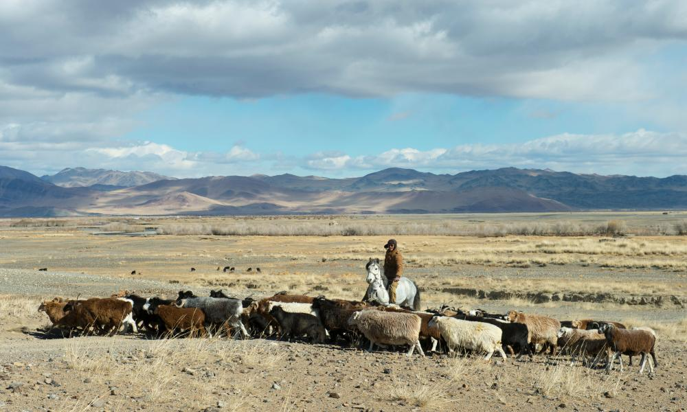 A goat herder in the Sagsai valley below Mongolia's Altai Mountains.