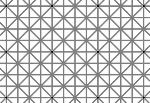 12 dots illusion by Jacques Ninio