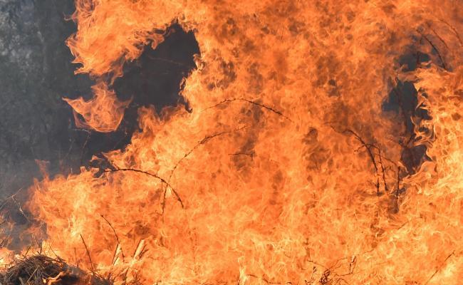 Flipboard Busbys Flat Drake Bushfires Up To 20