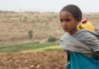 مصرف محصولات حیوانی و مشکل کمبود آب در جهان