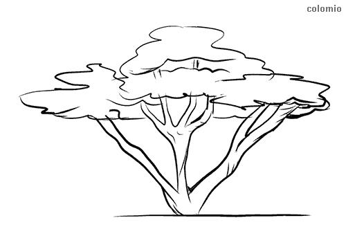 Baum Malvorlage kostenlos » Bäume Ausmalbilder