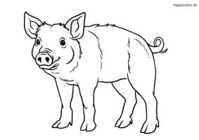 Bauernhof Tiere Malvorlage kostenlos » Bauernhof Tiere ...