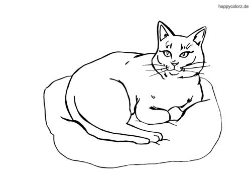 Malvorlagen Katzenbilder Zum Ausmalen - Malvorlagen