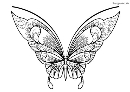 Schmetterling Malvorlage Einfach