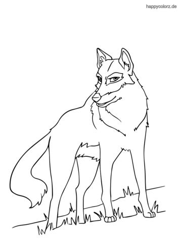 Wolf Malvorlage kostenlos » Wölfe Ausmalbilder