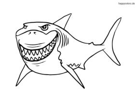 Hai Malvorlage kostenlos » Haie Ausmalbilder